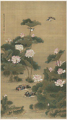 Chinese old painting Mandarin ducks on lotus pond by Shen Quan in Qing dynasty