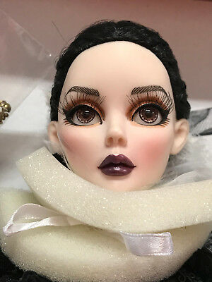 """Wilde Evangeline Ghastly """"All Hallow's Eve"""" Halloween Convention raven NRFB New"""