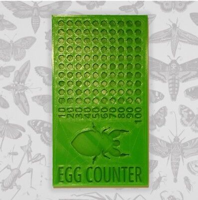 Stick and Leaf Insect Egg Counter - Easy Counting to 100 Eggs - Unique Item