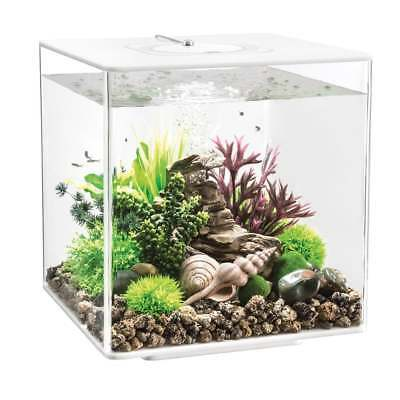 biorb cube aquarium mcr led lighting all in one acrylic fish tank
