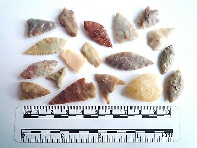 18 x Neolithic Arrowheads - Genuine Saharan Flint Artifacts - 4000BC (2931)