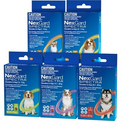 Nexgard Spectra Chewables for Dogs 1 Chew  ORANGE YELLOW GREEN PURPLE RED