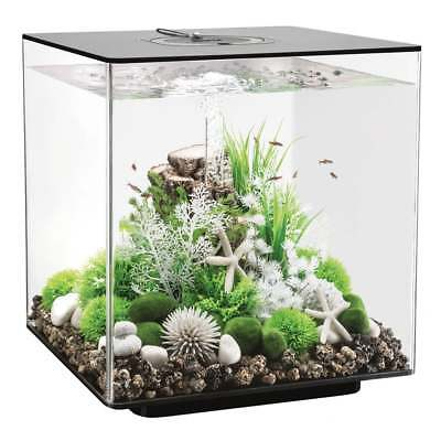 biorb cube 30 mcr led colour change clear black white aquarium fish