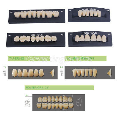 Full Set KAILI Dental Synthetic Polymer Resin False/Fake Teeth Upper+Low