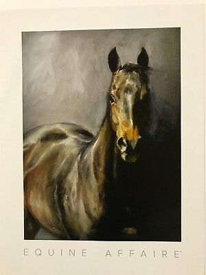 ANIMAL EQUINE HORSE BROWN MARE STALLION LARGE POSTER ART PRINT BB2957A