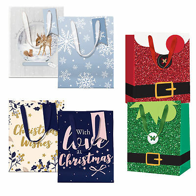 16x13cm Gift Bag with Ribbon Handles and Tag Choose Design