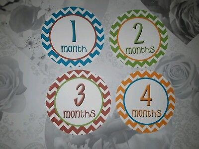 photo prop baby age memorable moments milestone cards 1-12 month baby shower