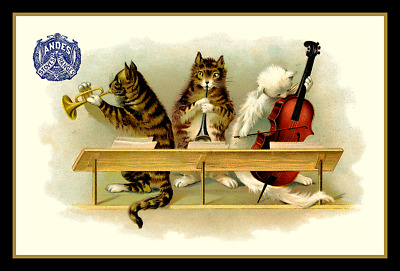 Cats Playing Musical Instruments Refrigerator Magnet - Free US Shipping