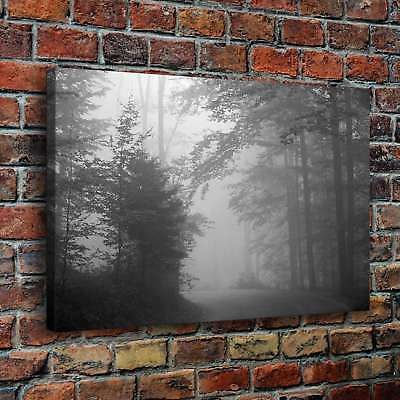 "12""x18""Foggy Forest HD Canvas prints Painting Home Decor Picture Wall art Poster"