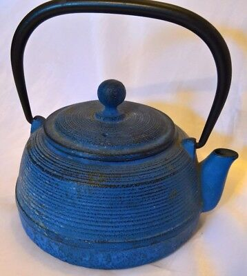 Tetsubin Cast Iron Tea Kettle Pot Made in Japan JOYCE CHEN Blue
