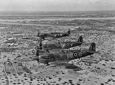 B&W WW2 Photo WWII British Spitfire Fighters in Tunisa 1943 RAF World War Two