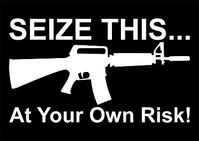 Seize this....at your own risk Vinyl Decal Sticker Car Truck Window