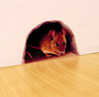 Mouse Hole Wall Sticker / Decal for the Skirting Board, mini mural, cute mice