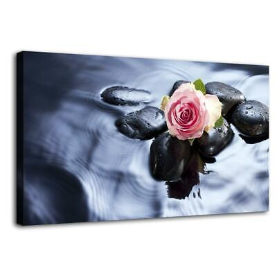 """Pink Rose Flower HD Canvas prints Painting Home decor Picture Wall art 14""""x24"""""""