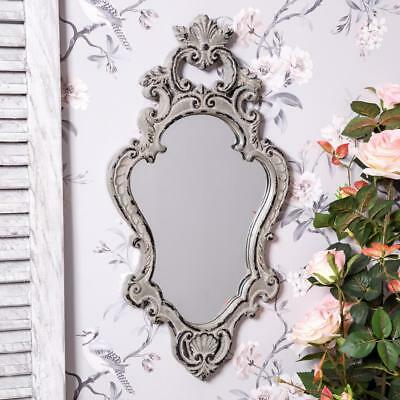 Grey Mirror Wall Mounted Ornate French Country Style Rococo Glass Chic Hallway