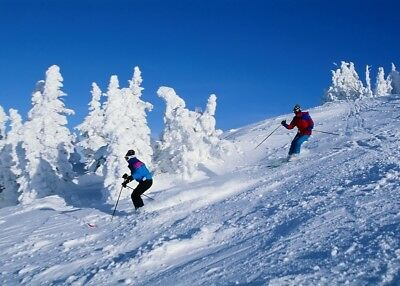 SKI Holiday in Mini ALPS+NEW YEAR's EVE, Calm Accommodation, HB,7 days, Chillout