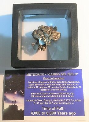 """""""RARE"""" 24.5 Gram Meteorite """"Campo Del Cielo"""" Museum Quality with stand and Cert"""