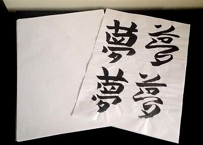 Japanese Chinese Calligraphy Rice Paper 100 Sheets