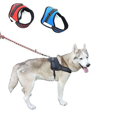 Dog Harness No-Pull Strong Adjustable Reflective XS S M L XL 11 Colours