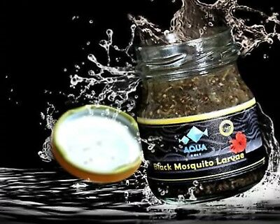 45G Mosquito Larvae UHT Fish Food for betta,killifish and all types of fish