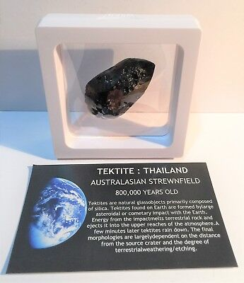 """""""RARE"""" 22.2 Gram TEKTITE Museum Quality with stand and label, asteroid, Comet"""