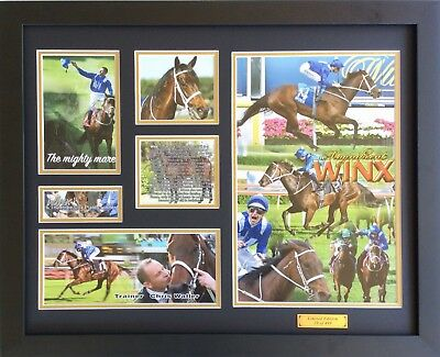 New Winx Hugh Bowman Chris Waller Signed Limited Edition Memorabilia Framed