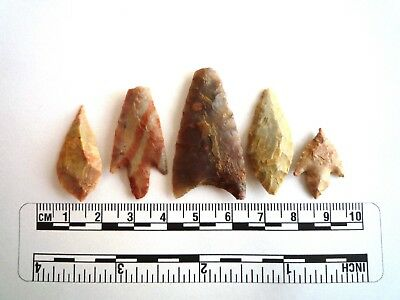 Neolithic Arrowheads x 5, High Quality Selection of Styles - 4000BC - (2436)