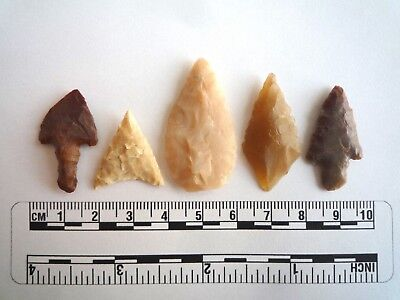 Neolithic Arrowheads x 5, High Quality Selection of Styles - 4000BC - (2422)