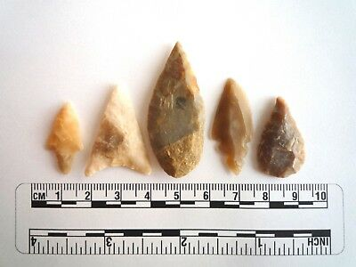 Neolithic Arrowheads x 5, High Quality Selection of Styles - 4000BC - (2428)