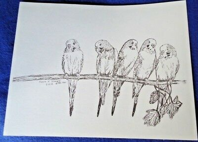 Parakeets Large Print 8-1/2 x 11 Ready for Framing New