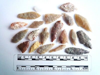 20 x Neolithic Arrowheads - Genuine Saharan Flint Artifacts - 4000BC (2947)