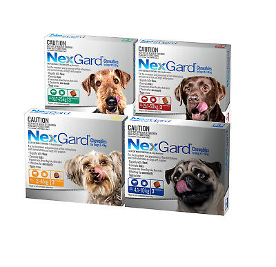 NexGard Flea & Tick Control For Dogs 3 Pack Very Small | Small | Medium | Large