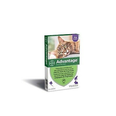 6 Pipettes Antiparasitaire Anti Puces Tiques Vermifuge Grand Chat 4-10KG 0,8ml