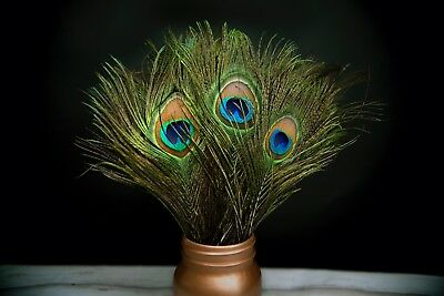 Natural Peacock Tail Feathers - Green Blue Eyes - 25-30cm Long - Great for craft