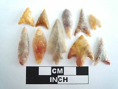 Neolithic Arrowheads x 10, High Quality Selection of Styles - 4000BC - (0392)