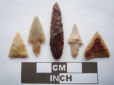 Neolithic Arrowheads x5, High Quality Selection of Styles - 4000BC - (Q116)