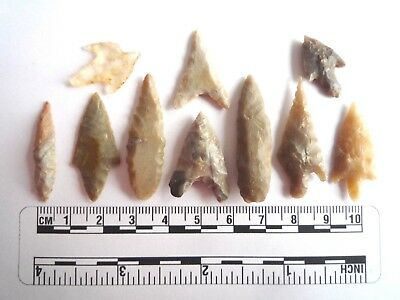Neolithic Arrowheads x 10, High Quality Selection of Styles - 4000BC - (2459)