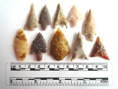Neolithic Arrowheads x 10, High Quality Selection of Styles - 4000BC - (2454)