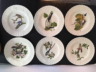 "Six Alfred Meakin 9"" Plates * Birds of American - National Audubon Society"