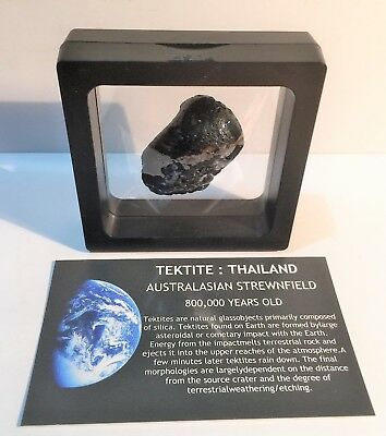 """""""RARE"""" 24.6 Gram TEKTITE Museum Quality with stand and label, asteroid, Comet"""