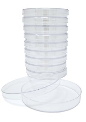 SPL Petri Dish 100x15mm,Polystyrene, Sterile, 50 pack of 10 Dishes (Case of 500)