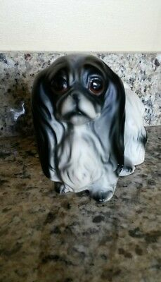 Japanese chin collectible