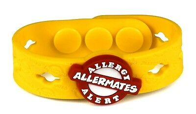 Allermates Charms For Multi-Charm Wristband Medical Allergy Id Bracelet