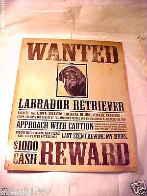 """Wanted Poster Labrador Retriever Dog Puppy Cute Tin Metal Sign 16"""" T X 12 1/2"""" W"""