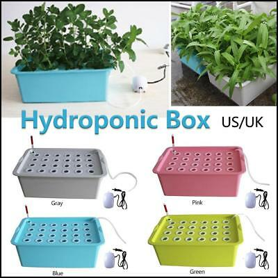 24 Holes Plant Site Hydroponic System Grow Kit Bubble Indoor Cabinet Box Garden
