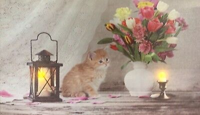 Cat LED Light Up Lighted Canvas Painting Picture Wall Art Home Decor