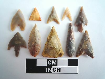 Neolithic Arrowheads x 10, High Quality Selection of Styles - 4000BC - (401)