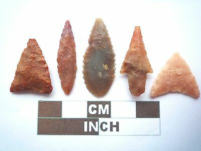 Neolithic Arrowheads x5, High Quality Selection of Styles - 4000BC - (X045)