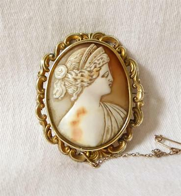 Large Antique 19Th Century Carved Shell Cameo Brooch In Ornate Rolled Gold Mount