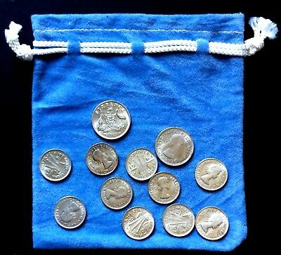 Twelve (12) Traditional Australian CHRISTMAS Pudding Coins in pouch - see photo